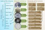 Естественные науки это какие науки примеры – Какие науки называются естественными 🚩 виды естественных наук 🚩 Естественные науки
