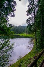 Воды в природе фото – Картинки природа вода лес, Стоковые Фотографии и Роялти-Фри Изображения природа вода лес