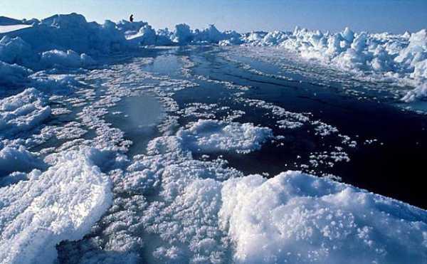 Открытие северного полюса реферат 9406