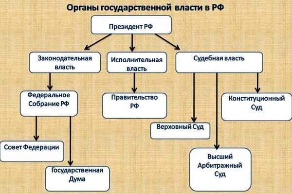 Судебные приставы узнать задолженность по фамилии новосибирск